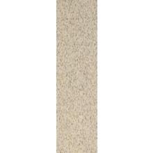 RAKO TAURUS GRANIT sokel 30x8cm, nevada